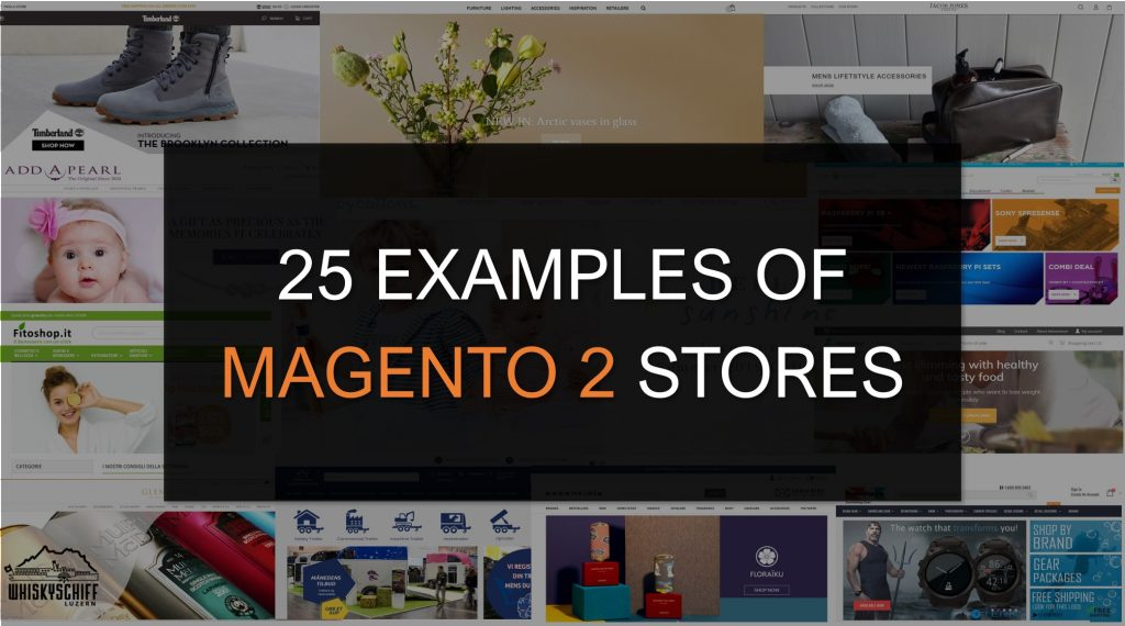 25 examples of Magento 2 stores